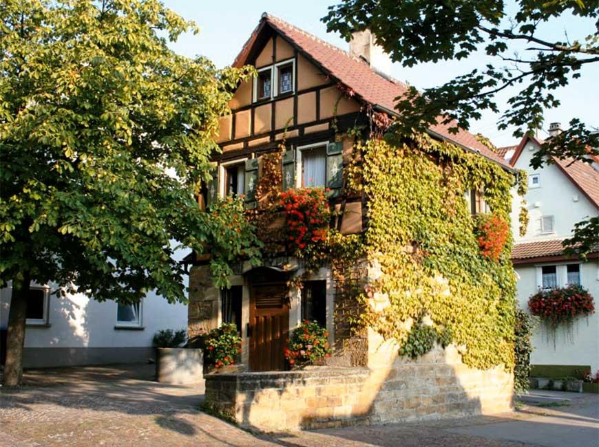 mittleres_Backhaus